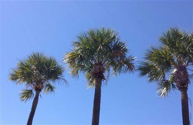 Aventura, FL