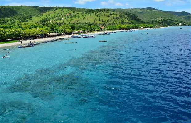Isla de Atauro