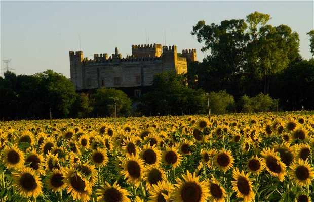 Castillo de los Duques de Arión