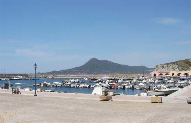 Buggerru Port