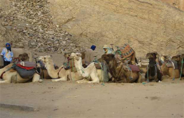 Viaje hacia el desierto marroquí