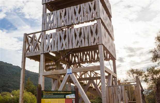 Observatorio de Aves de la Marisma Victoria