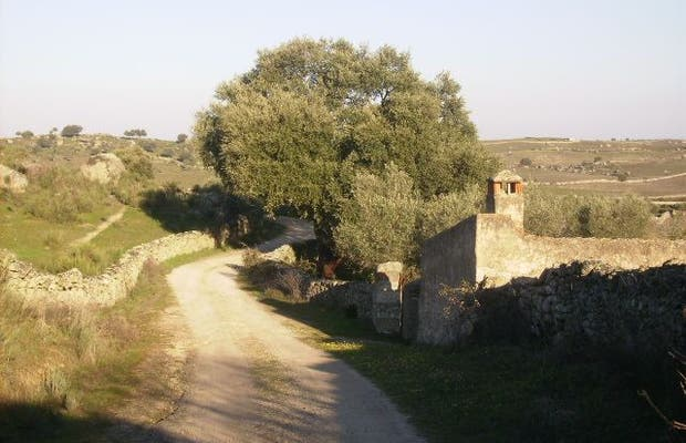 Ruta de la Nacivera