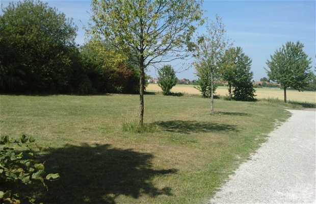 Parque de los espinos