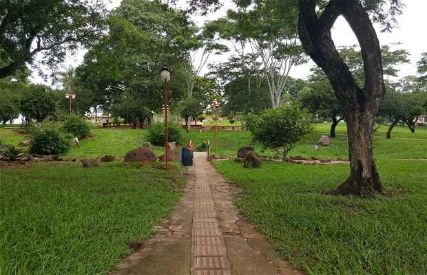 Praça das cerejeiras