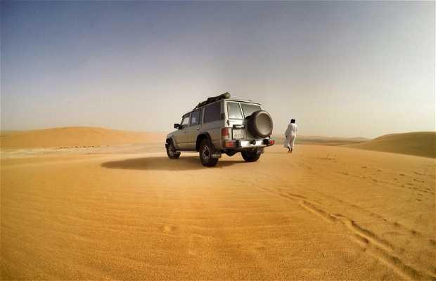 Un paseo por el Sahara