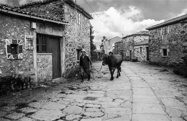 Melide Camino de Santiago