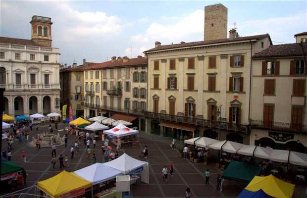 Cafe Del Tasso