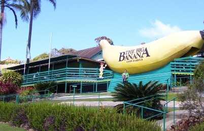 El gran plátano