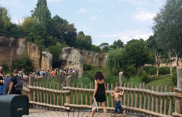 Marche Patakan, Zoo Leipzig