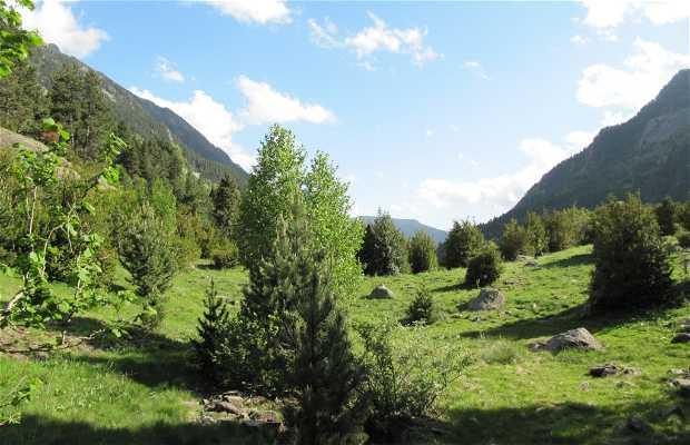 Alba Botanical Trail Gorgas