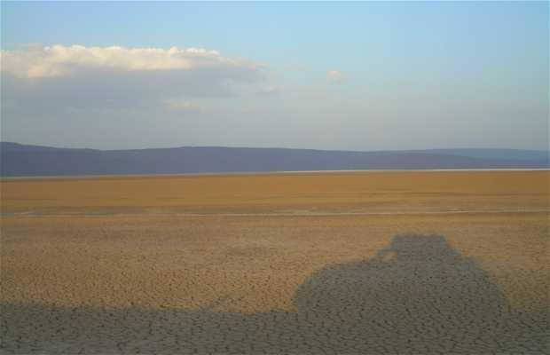 Desierto Afar