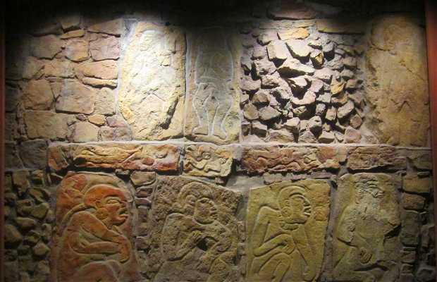 Sala de La Cultura de Oaxaca