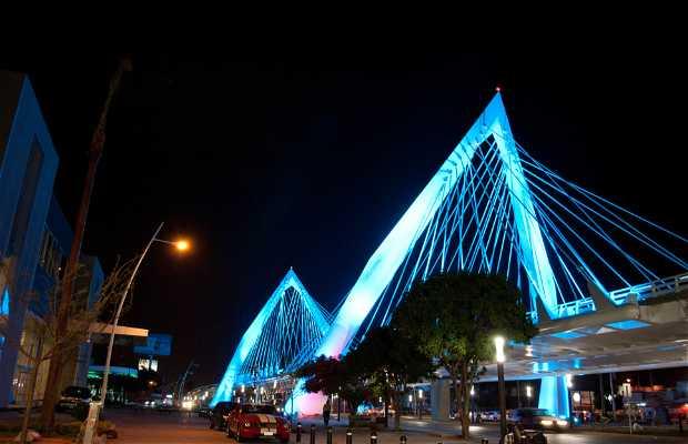Ponte Matute Remus