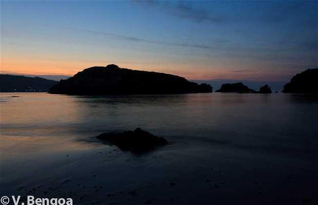 Isla de San Pedruco