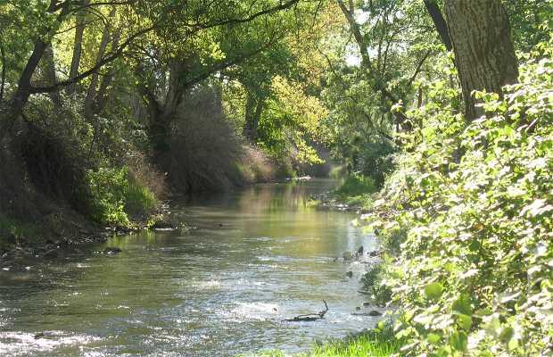 Jucar River