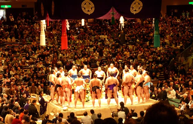 Grande torneo di Sumo
