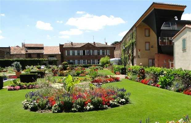 Les jardins de la Mairie à Lavaur