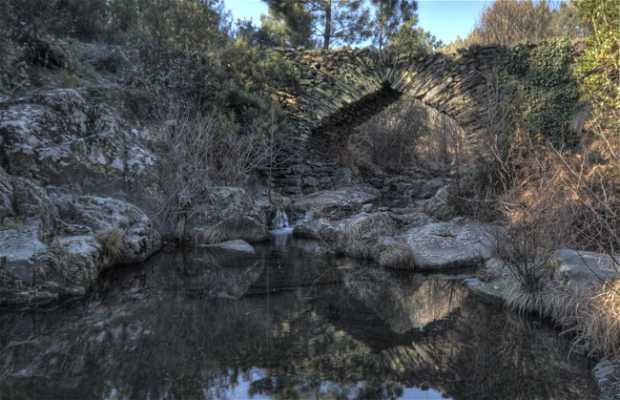 Los Machos Bridge