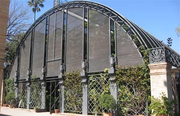 Botanical Garden of Valencia