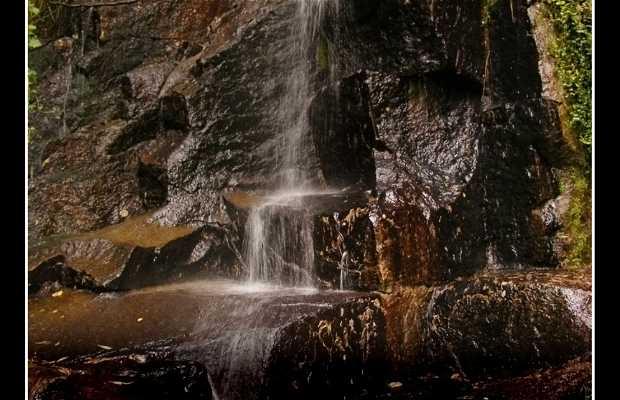 La Cascade du parc Ecuador