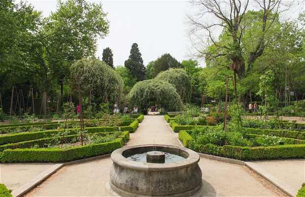 Jardim Botânico de Madrid
