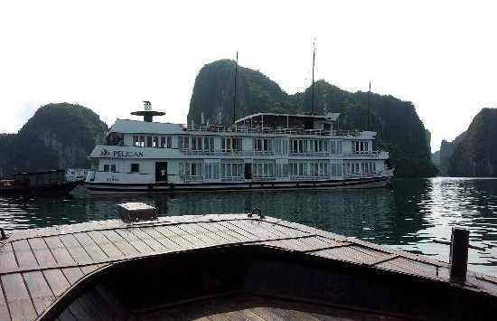 Pelican Crucero