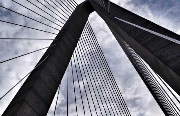 Cooper Bridge