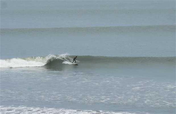Surf a Chicama
