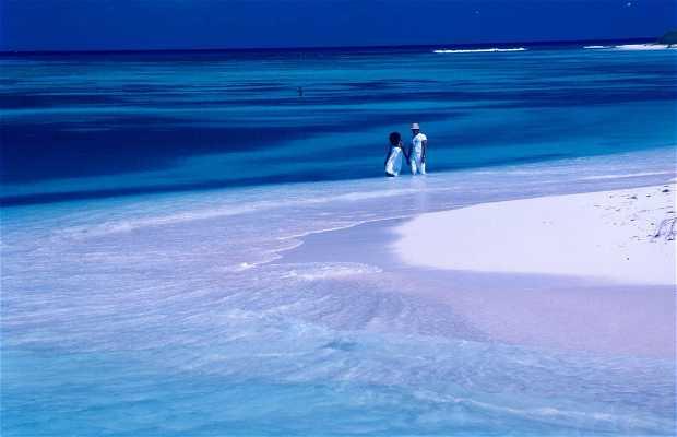 Ilha de Margarita