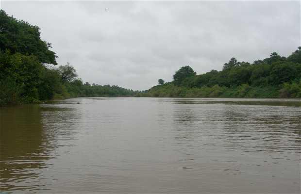 Excursión por el Río Gambia en Wassadou