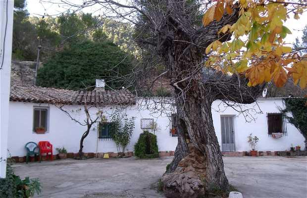 Restaurante El Batanero