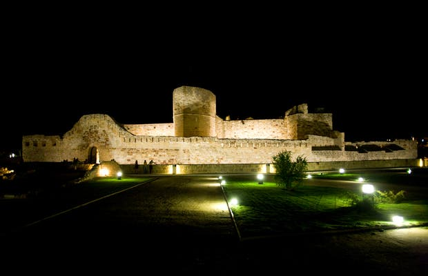 Castle of Zamora