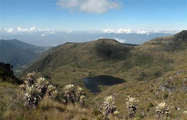 Santuario de Flora y Fauna de Iguaque