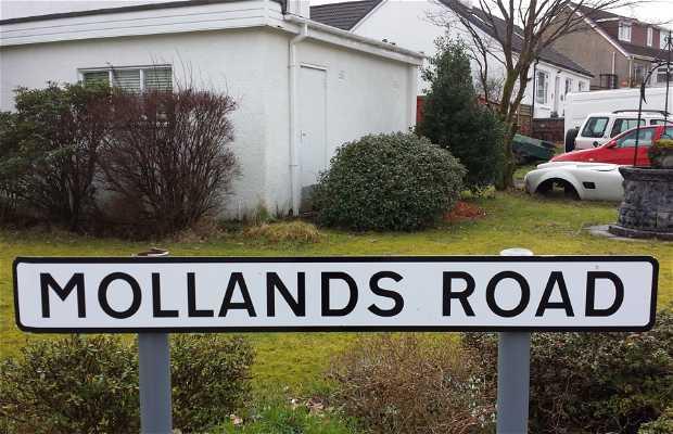 Molland Road