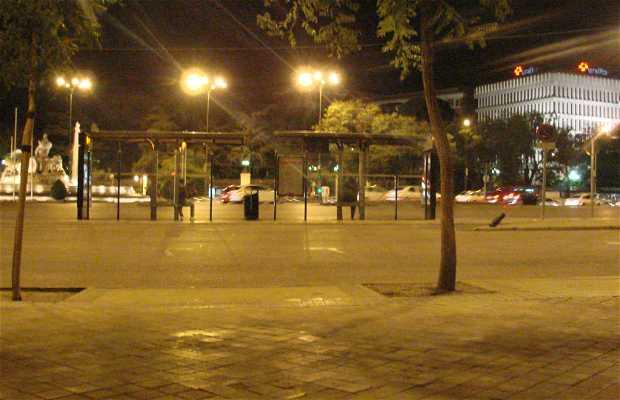 Night buses in Madrid
