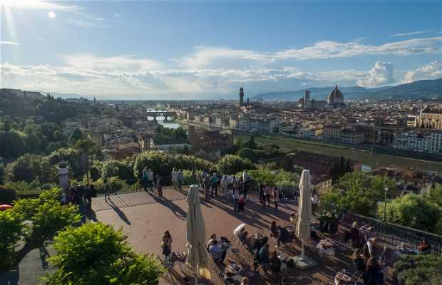 Plaza Michelangelo