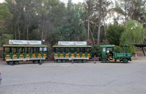 Tren del Cabriel