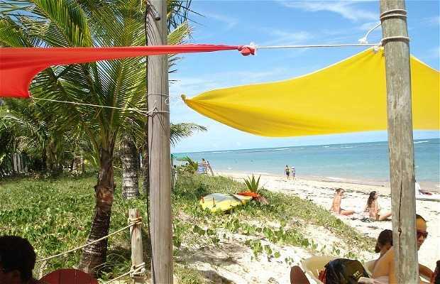 Sting Praia Bar