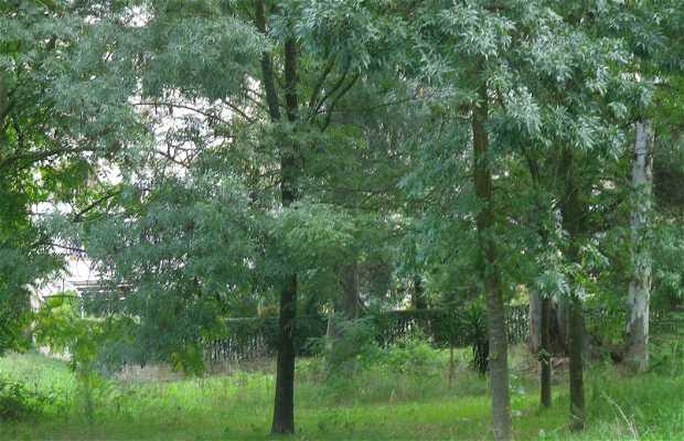 Reserva Natural Laurentino-Acqua Acetosa