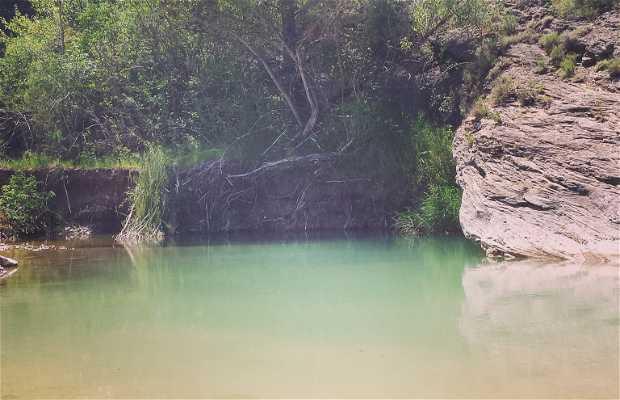 Poza del río Guarga