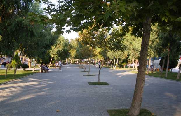 Primorski Bulvar
