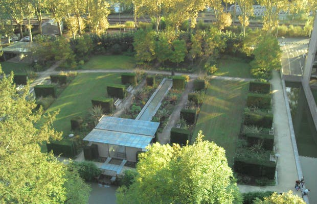 Contemporary garden of the hotel department