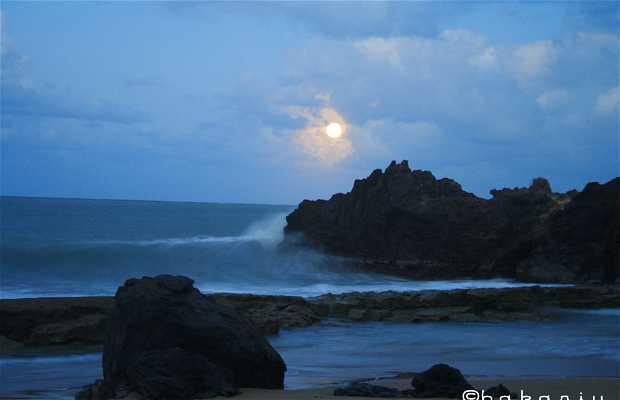 Playa de Clugny