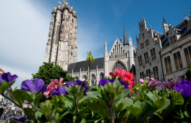 Cathedral of Mechelen
