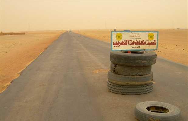 Mercado del desierto