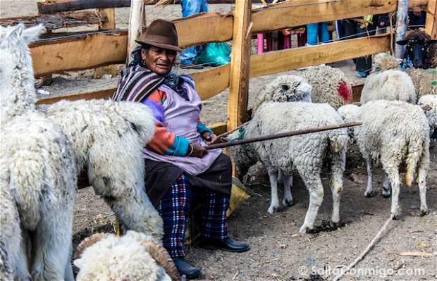 Mercado indígena de Saquisilí