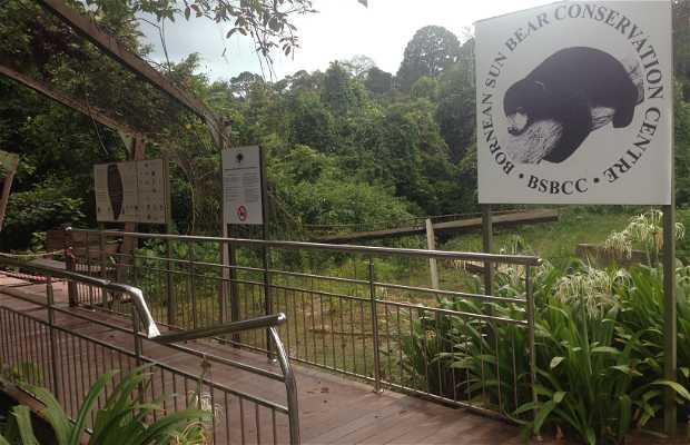 Centro de Conservación del Oso Miel en Borneo