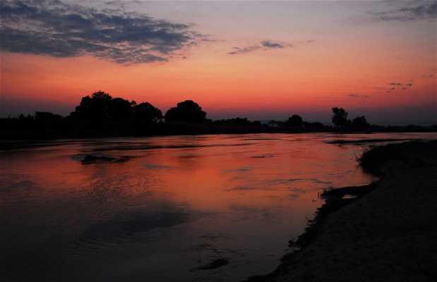 Safaris nocturnos en los parques del valle del Luangwa