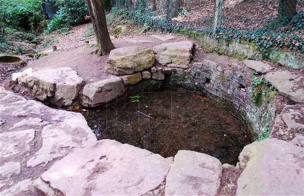 Fontaine de jouvence et tombe de Merlin